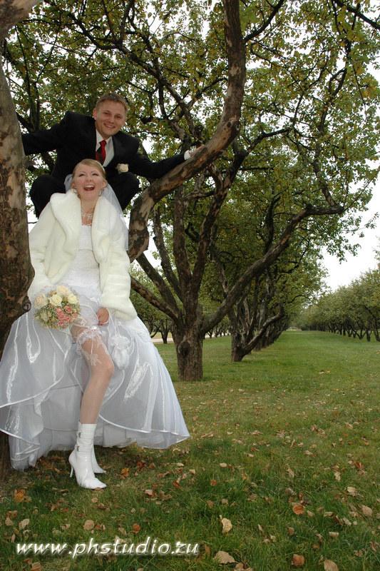 Отсос на свадьбе