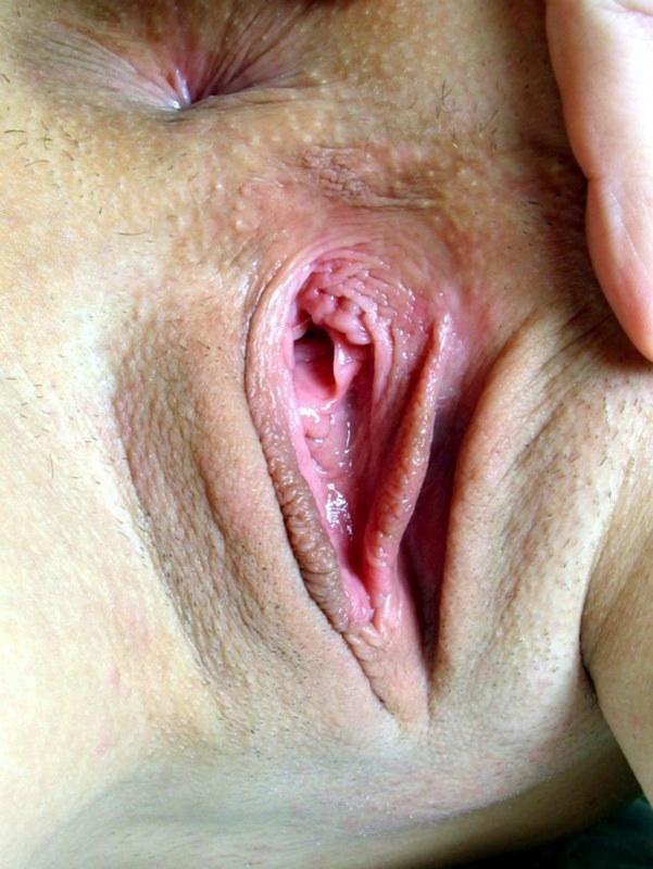 Женские киски: с кустиками и без них